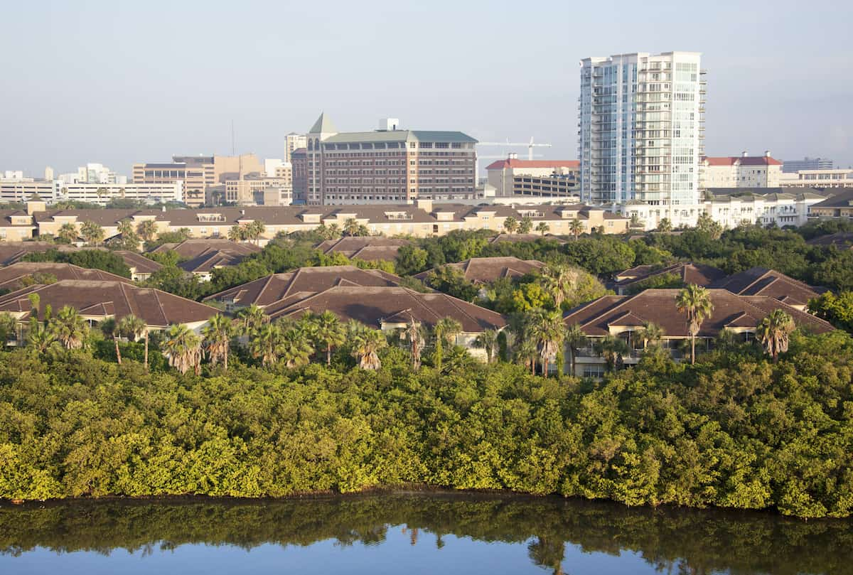 harbour island tampa